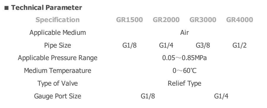 GR2000-TSKT